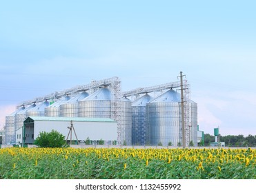 Row of modern granaries for storing cereal grains in field