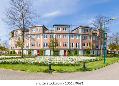 Row of modern houses build in a circle in a family friendly suburban neighborhood in Houten in the Netherlands.