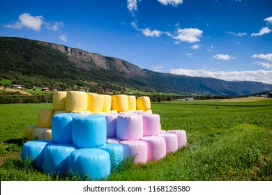 Row of multi colored blue pink and yellow plastic wrapped hay bales on a field in Southern Norway with mountain range in background