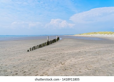 Row of old wooden posts on West Wittering beach at low tide.