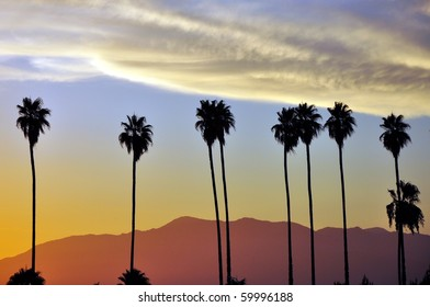 Row of palm trees against setting sun and mountains