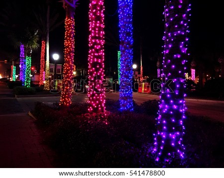 a row of palm trees decorated with christmas lights neptune beach florida usa - Palm Tree Christmas Decorations