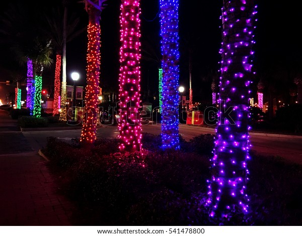 Row Palm Trees Decorated Christmas Lights Stock Photo Edit