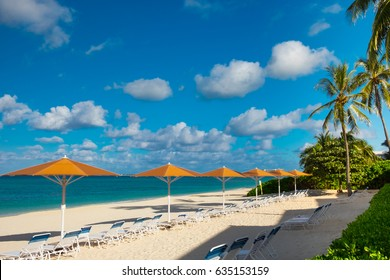 Row of parasols and sun loungers facing the Caribbean Sea on Seven Mile Beach, Grand Cayman, Cayman Islands