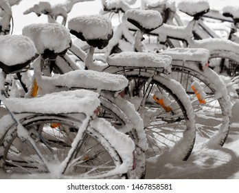 Row of parked bicycles covered in snow