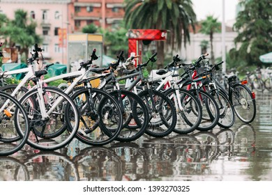 Row of parked different bicycles. bicycles stand on a parking for rent after the rain