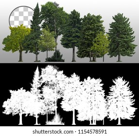 Row of pines and green trees isolated on transparent background via an alpha channel. Very high quality mask without unwanted edge. High resolution for professional digital composition.