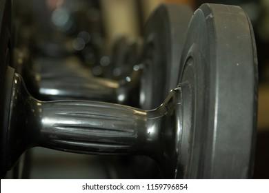 A row of plastic dumbbells on a rack