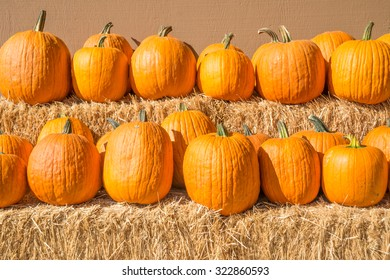Row of pumpkins on straw