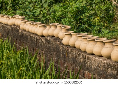 A row of recently thrown pots dries in the sun on a brick wall by a rice field.