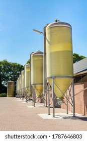 Row of silos with feed at livestock on european farm