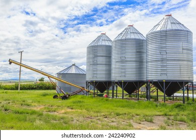 A row of steel grain bins used by farmers to store wheat, barley or other grains. An auger is used to fill the bins.