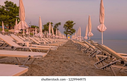 A row of sun loungers at surnrise prepared, and in perfect lines, for the day ahead. Trees are in the background and the sea beyond.