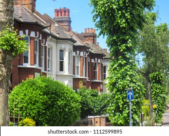 Row of terraced housing surrounded by mature trees in Chiswick, a leafy affluent district of west London.