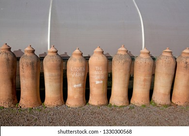 Row of Terracotta Rhubarb Forcing Pots