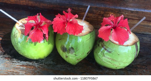 Row of three coconut drinks adorned with red hibiscus flowers
