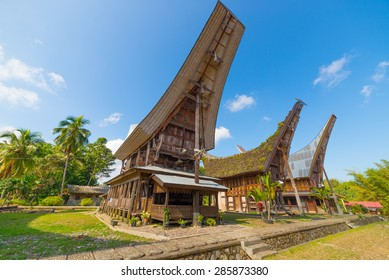 Row of traditional houses in a tipical traditional village of Tana Toraja, South Sulawesi, Indonesia. Outstanding local architecture, boat shaped rooftop and traditional decoration. View from below.