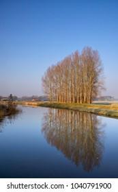 A row of trees is reflected in the river Berkel near Lochem in the Dutch region Achterhoek