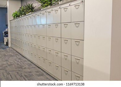 Row of white office filing cabinets
