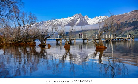 Row of willow trees on Lake Wakatipu in Glenorchy, New Zealand