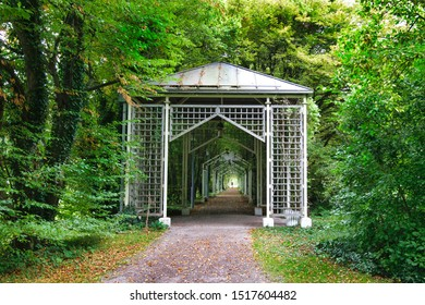 a row of wooden trellis, in the form of gazebos, lined up in a row, through which walk leads in an urban park, lined with old trees and dense bushes