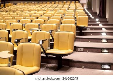 Row of yellow seat in auditorium