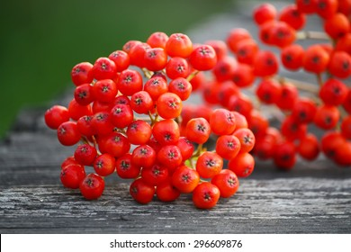 Rowan berries on vintage wooden boards