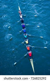 Rowers in Rainbow Colors