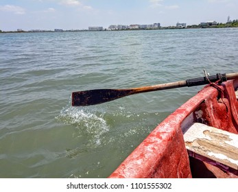 Rowing boat paddle movement