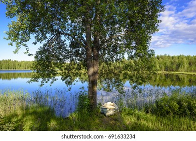 Rowing boat under tree in calm weather