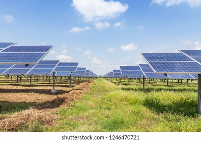 rows array of polycrystalline silicon solar cells or photovoltaic cells in solar power plant turn up skyward absorb the sunlight from the sun alternative renewable energy on blue sky