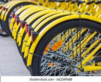 Rows of bikes are placed in the white lines painted on the road in Shanghai. The disorder of parking becomes a social problem according the increase of share bikes.