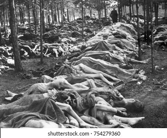 Rows of bodies at Nazi-German Belsen Concentration Camp on April 15, 1945. They were among thousands of corpses that lay unburied on the camp grounds when the camp was liberated by British Army, World