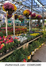 Rows of colorful flowers and plants for sale at a garden nursery at The Home Depot, San Diego, USA. October, 15th, 2019