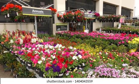Home Depot Center Images, Stock Photos & Vectors | Shutterstock