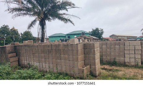 Rows of concrete blocks with Palm tree