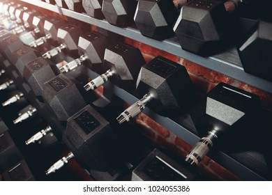 Rows of dumbbells in gym with loft modern