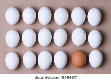 Rows of fresh white farm eggs with one brown one in the bottom row in a concept of individuality and diversity, overhead close up view