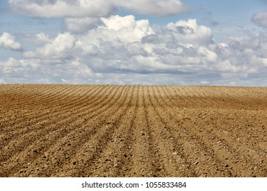 Rows of freshly planted potatoes in an Idaho farm field.