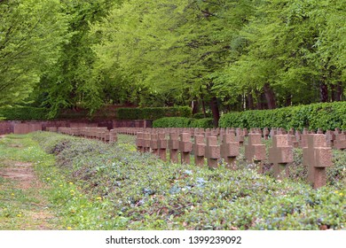 Rows of identical small cross shaped gravestones among grass and trees in forest in Cemetery of Honour and Memorial for soldiers fallen in World War I in Germany