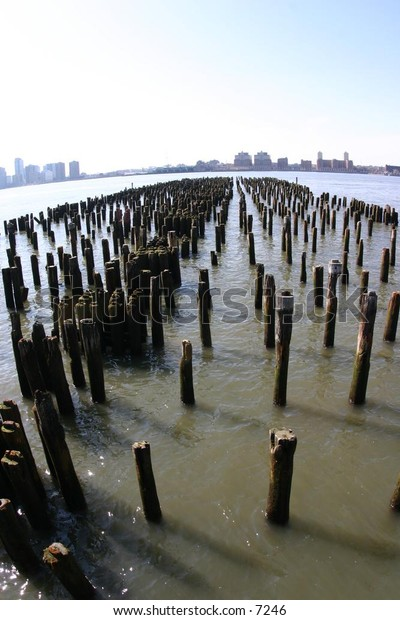 rows of posts poking out of river