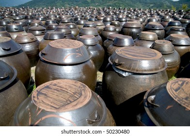 Rows of pots used for the fermentation of Korean foods like Kimchi.