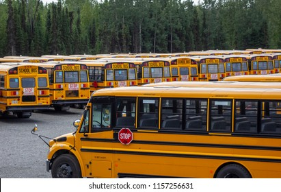 Rows of School busses in a municipal lot
