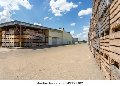rows of wooden crates boxes and pallets for fruits and vegetables in storage stock. production warehouse. Plant Industry