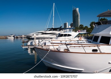 The rows of yacht at the port and the condos in the background