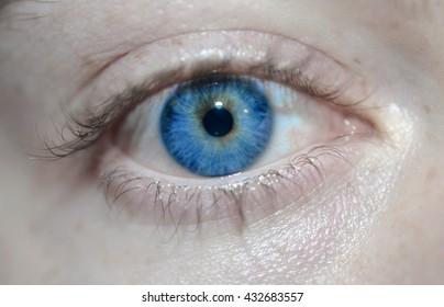 Royal Blue Eye