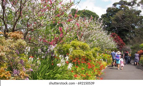 Royal Botanic Gardens, Sydney, 27 MAY 2017: Crowd enjoying blossoms in Royal Botanic Gardens on a sunny day along colourful flowers and tree, it is located in the heart of Sydney.