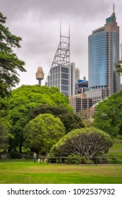 Royal Botanical Garden, Sydney, Australia -January 26, 2018: Australia Day is picnic day even when the weather doesn't cooperate. View of City Business Center and City Tower from the Botanical Garden.