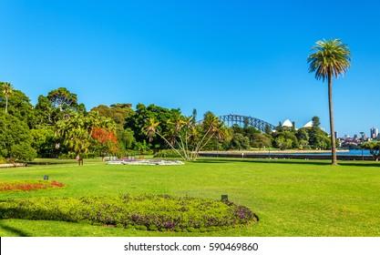 The Royal Botanical Garden of Sydney - Australia, New South Wales