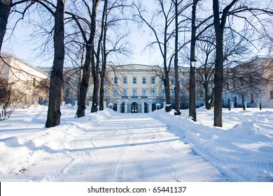 Royal castle in the winter